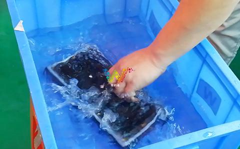 在水中跳舞的显示屏模组.jpg